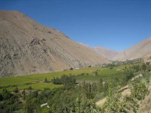 Valle del Elqui (1)